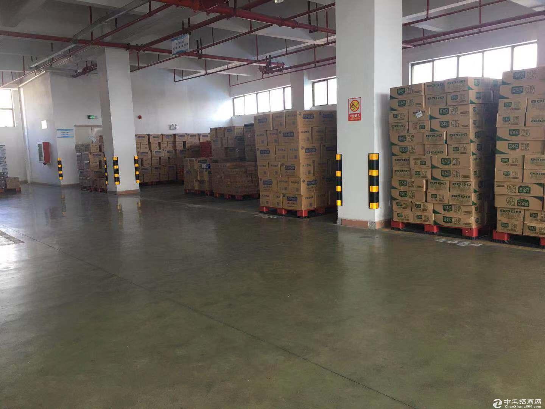 平湖标准仓库7000平招租 可分租 带有货梯