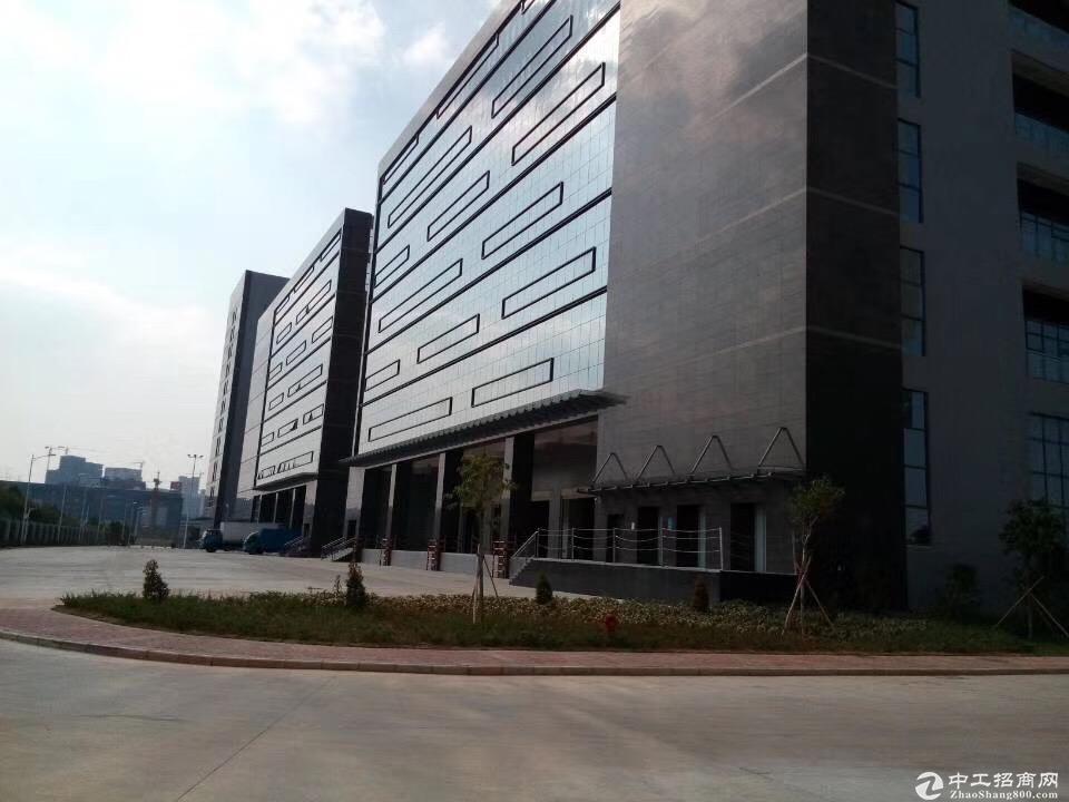 布吉标准物流仓库_2楼3300㎡新空出,电梯5吨_带卸货平台