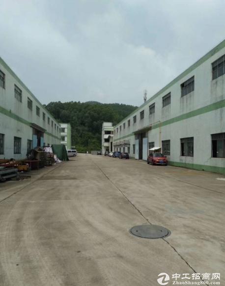 万江一楼3600平方厂房招租,可分租,高5.5米 可办环评