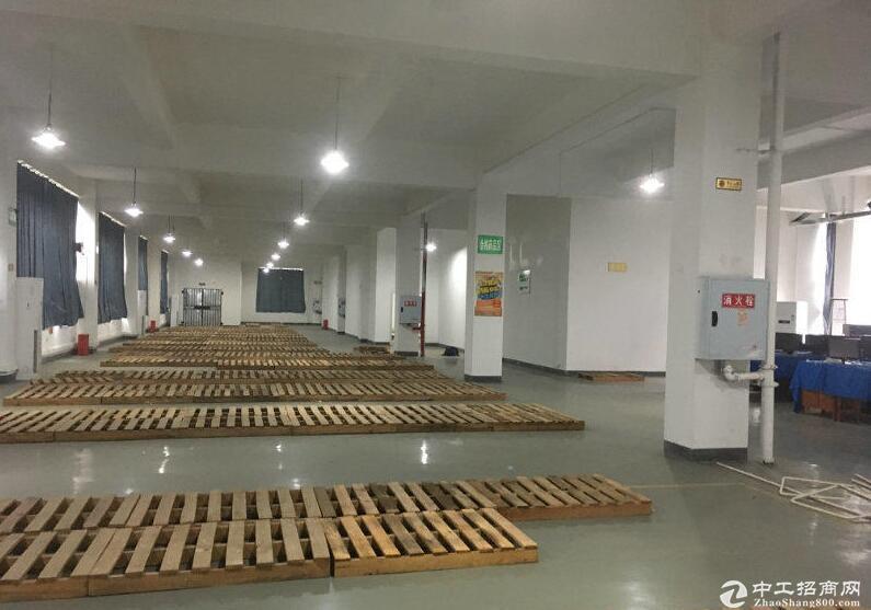 茶园车管所旁临街医药仓库单层1300平米出租