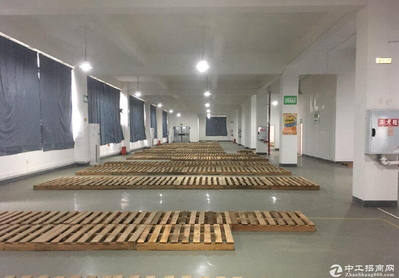 茶园车管所旁临街医药仓库单层1300平米出租-图2