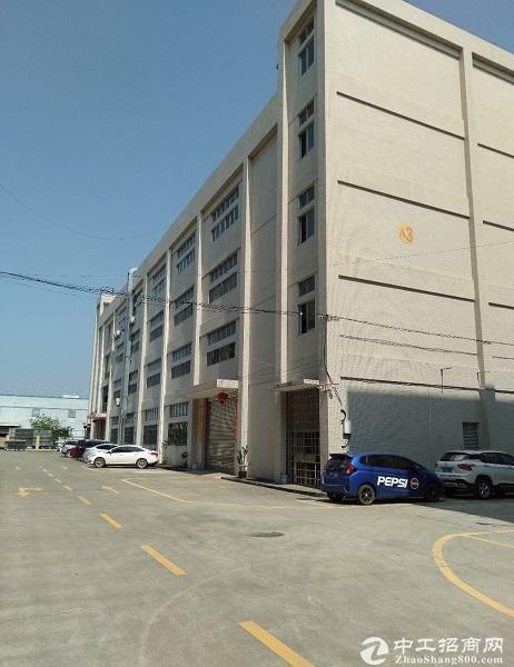 广东中山石岐工业园6300平标准厂房仓库出租可300平起分租