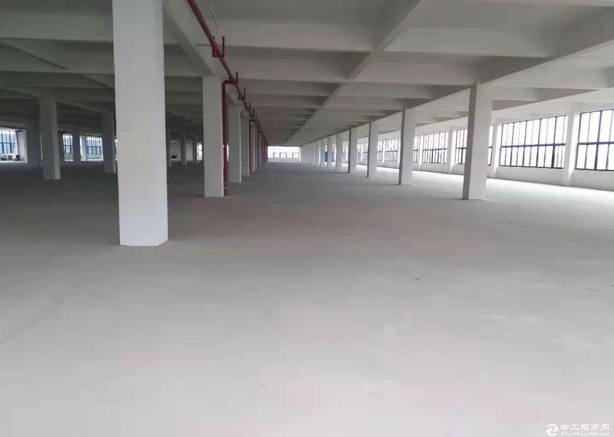 江津双福新区标准框架结构9000平价格便宜厂房