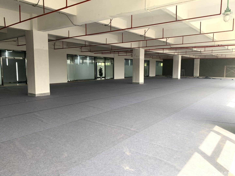 盐田沙头角保税新出楼上800平米带精装修红本厂房出租