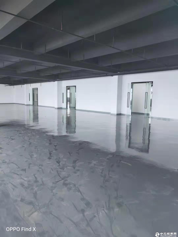 西丽大学城地铁口3520平厂房出租(可做办公研发仓库)