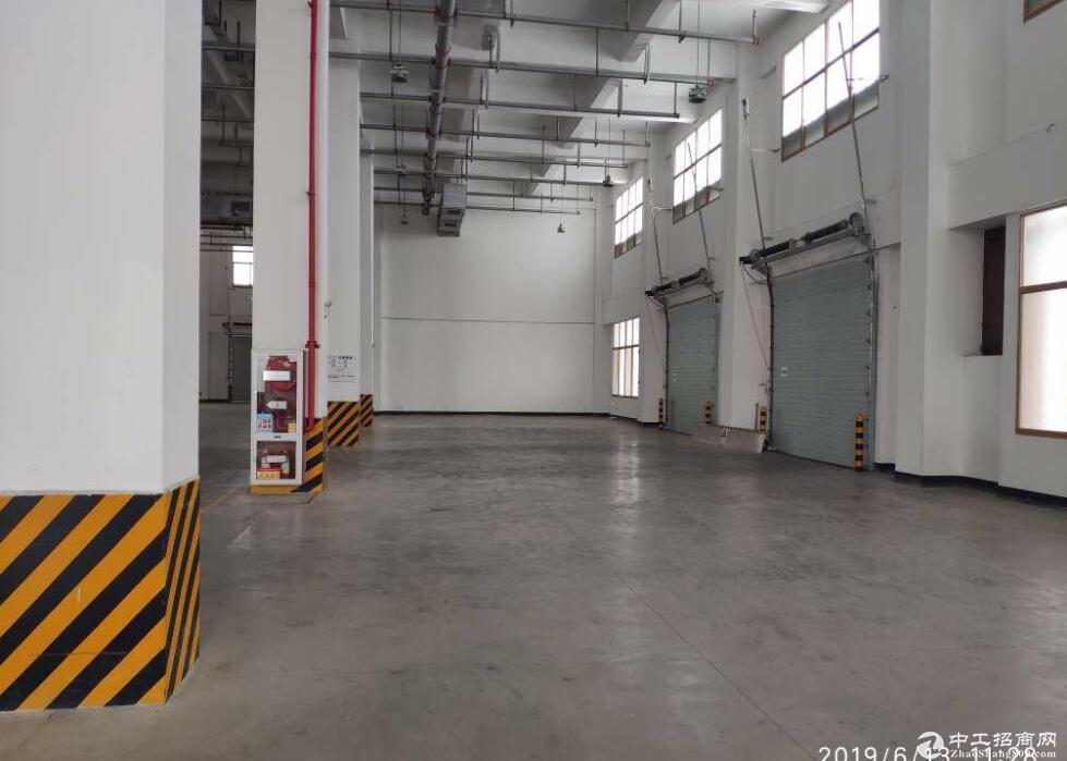 民众锦标科技港 一楼研发厂房出租666平 价格好谈