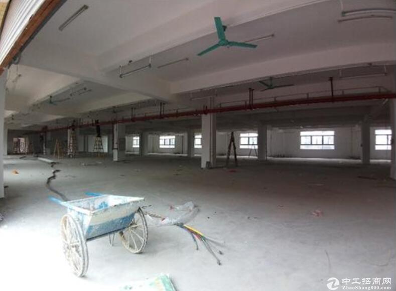 民众镇多宝社区,独栋厂房出租 2000㎡起,10元/平