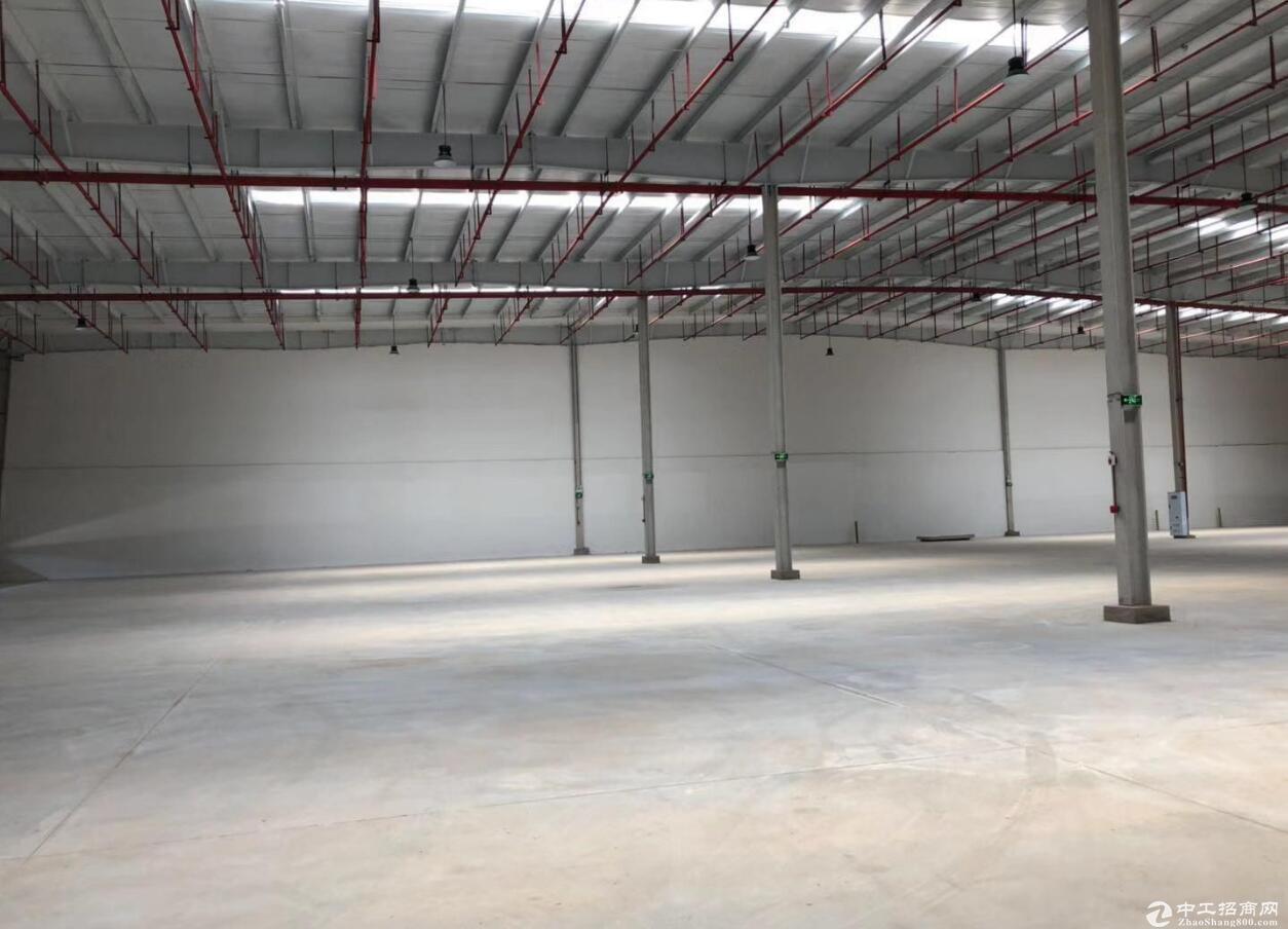 江北港城工业园标准丙类仓库5000平 分租-图2