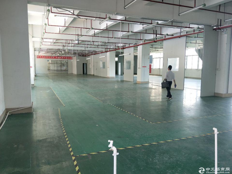 【招租】六约工业区新出800平厂房仓库出租,带装修可分租