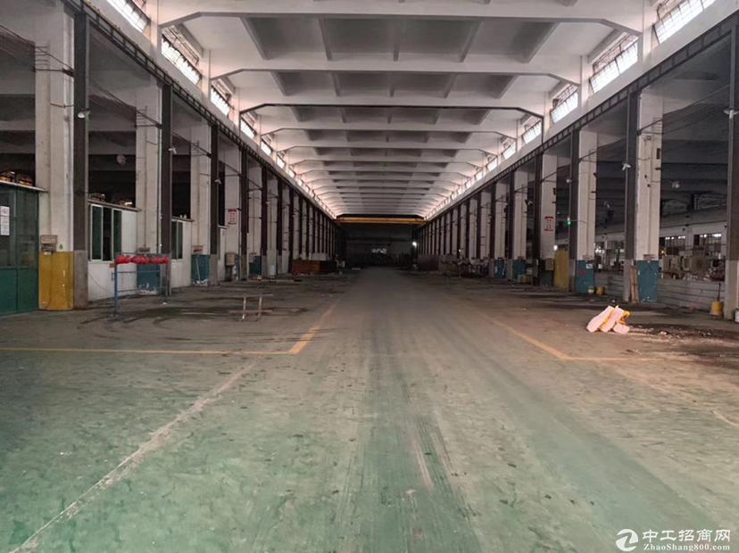 南海罗村单一层厂房仓库16000㎡