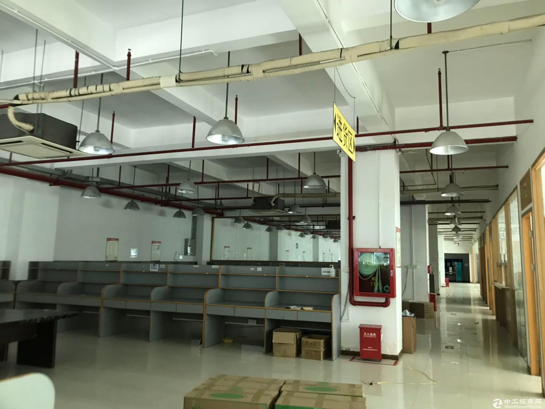 深圳区域原房东8959平米红本建筑面积独院厂房出售