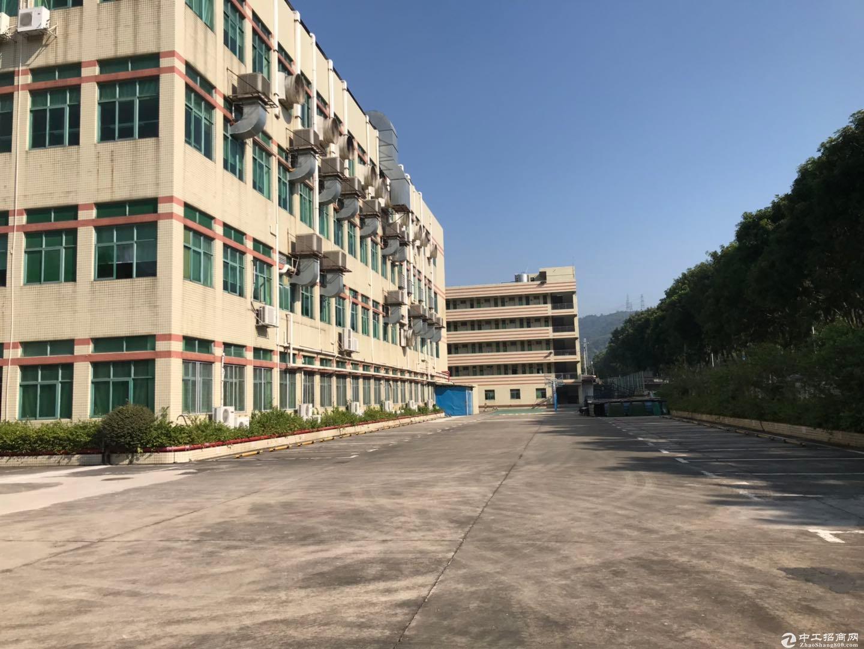 深圳区域原房东8959平米红本建筑面积独院厂房出售-图3