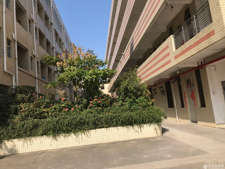 深圳区域原房东8959平米红本建筑面积独院厂房出售-图9