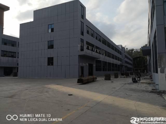 横岗安良工业园11000平红本厂房仓库可分租,全新玻璃幕墙大