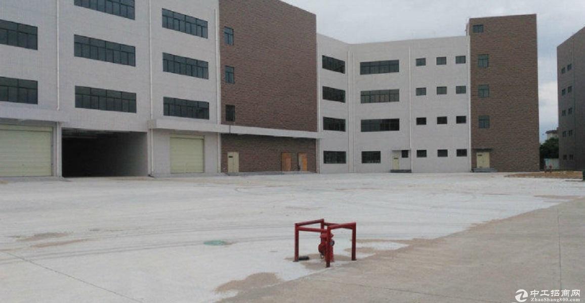 广东中山南头工业园1万平厂房仓库出租可300平起分租可办环评-图3