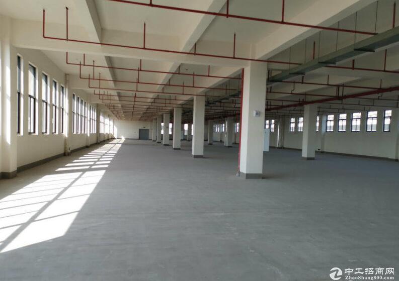 渝北1200到6000平米标准厂房出租
