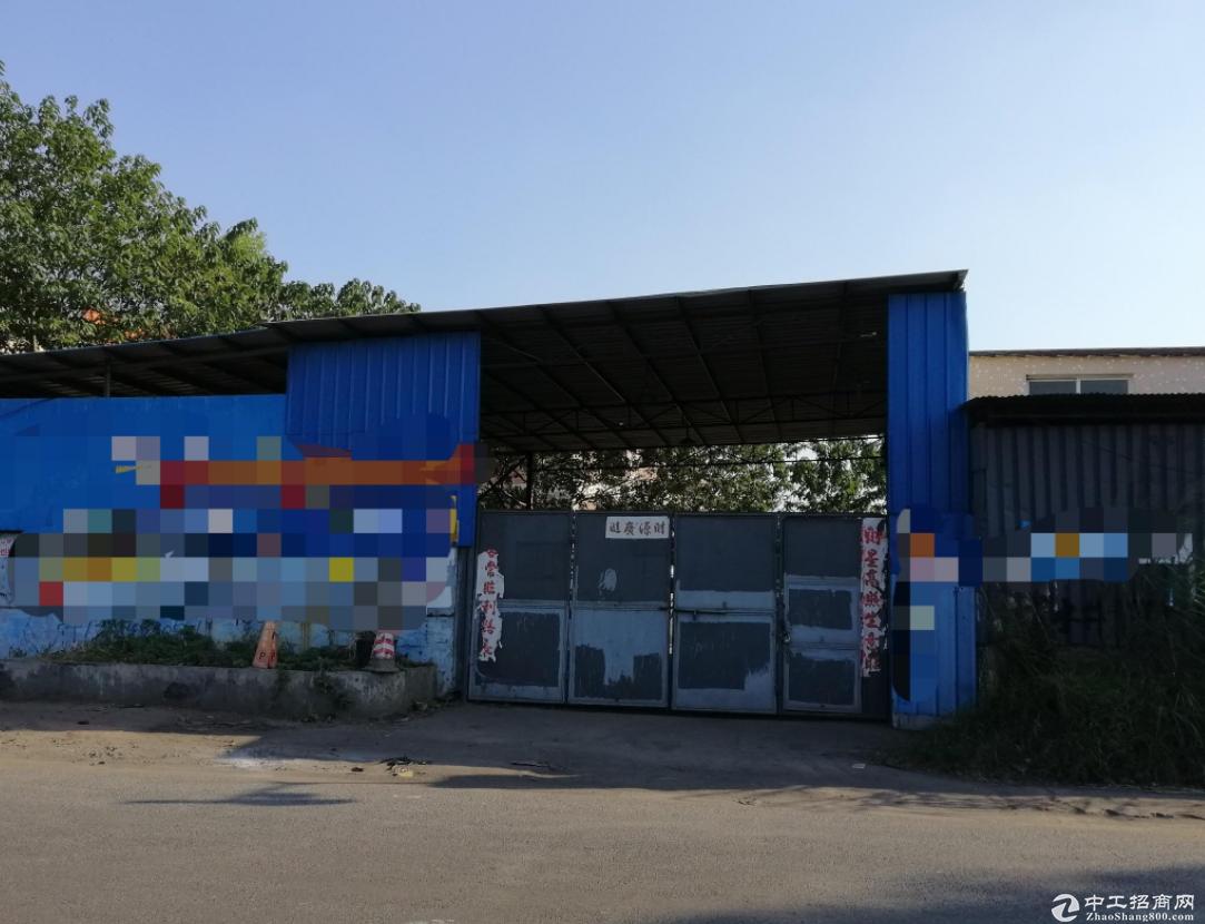 出租西樵工业园1300方标准独院厂房或仓库 50k电