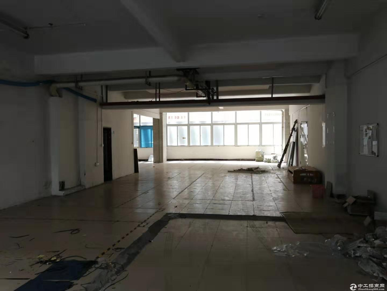 南山一楼400平方厂房出租-图2