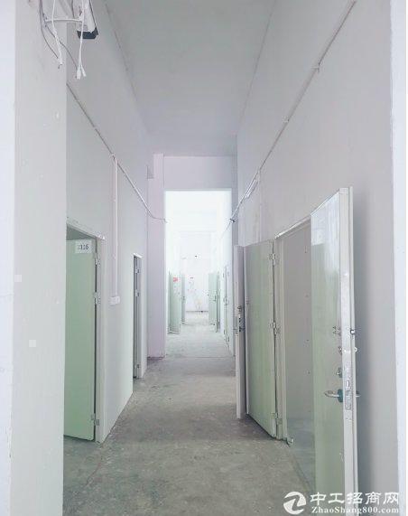 南山一楼仓库50平特价出租