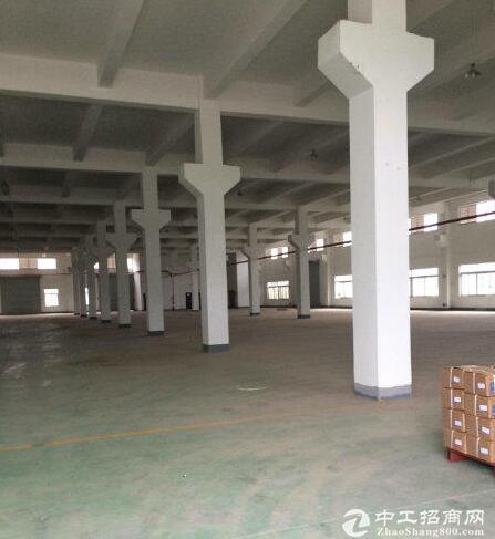 蔡家一楼出租1700平米厂房