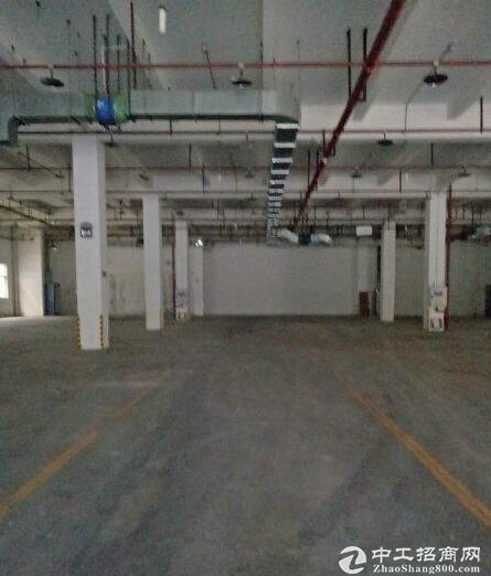 20块一楼厂房出租位于寸滩工业园