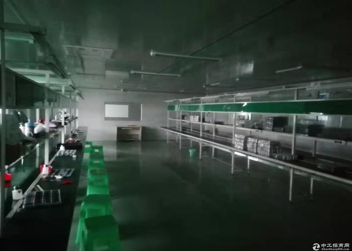 茶园经开区1200m2电子厂房出售