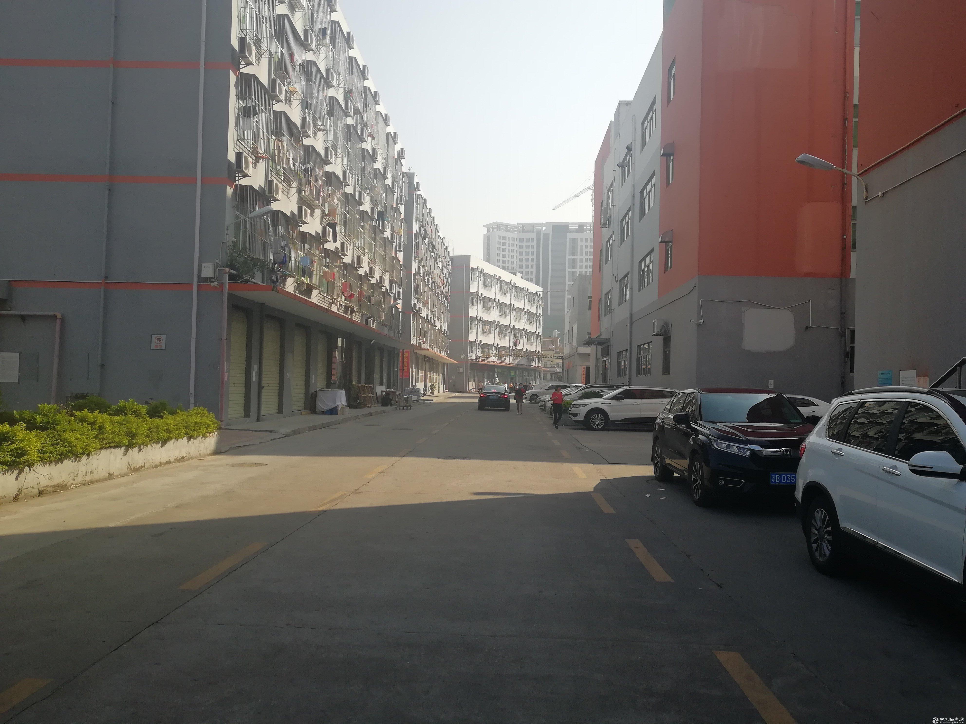 布吉高速出口附近2楼整层3300平米仓库厂房出租可分租