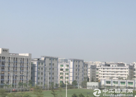 坂田原房东红本一楼700平,950平,电商仓库,物流,首选!