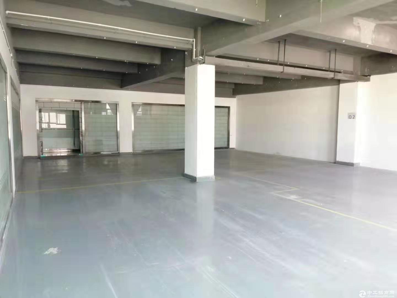 南山新出楼上330平红本厂房出租!