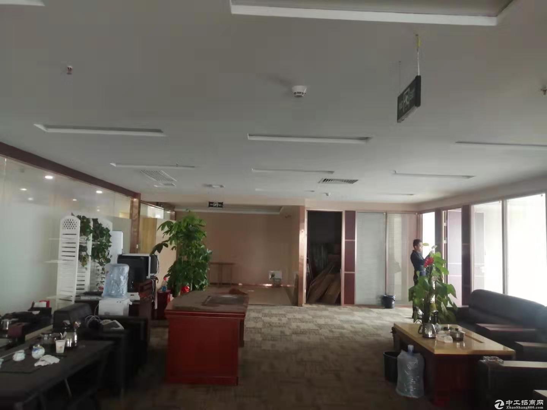 西丽办公楼310至80平米出租