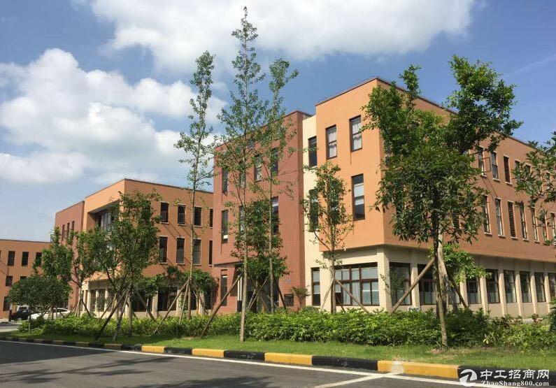 两江新区 全新独栋厂房 大产权 可按揭