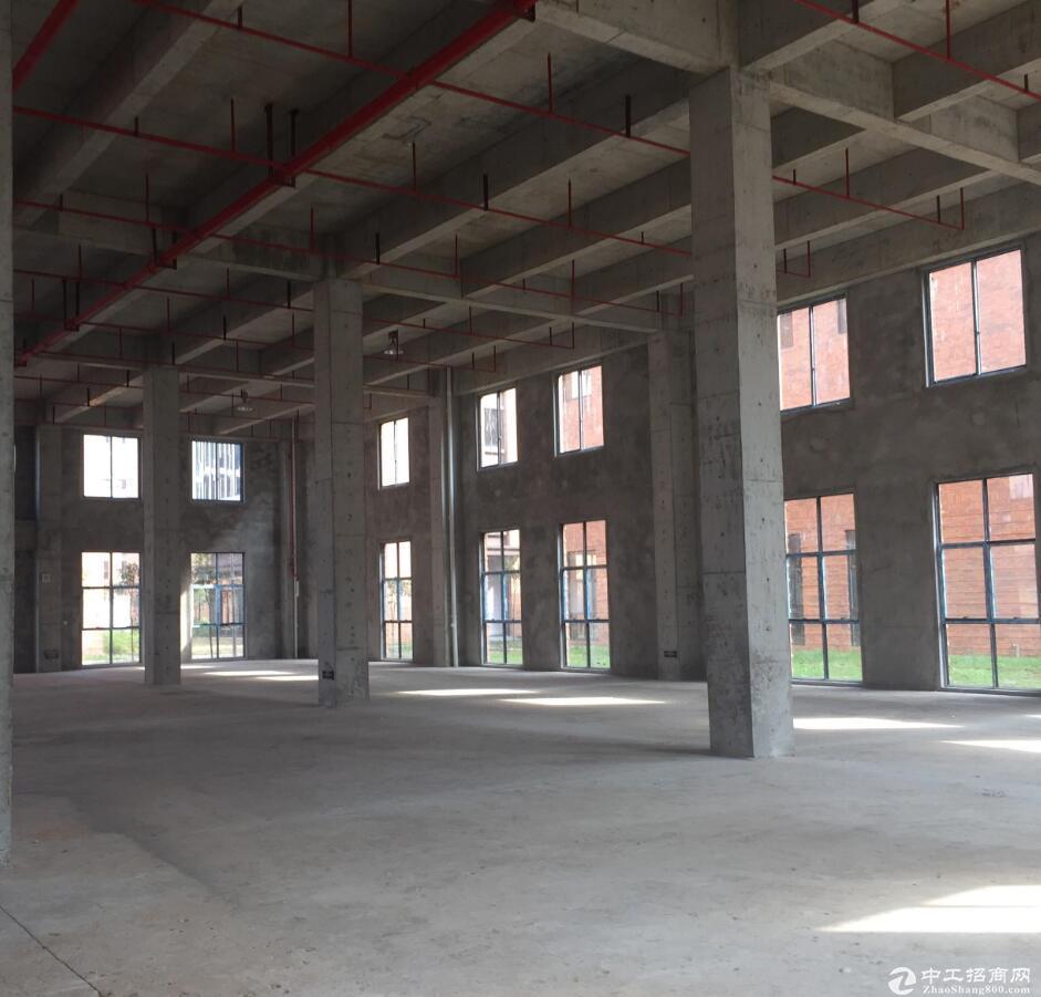 珞璜12米挑高钢结构独栋厂房经此一席