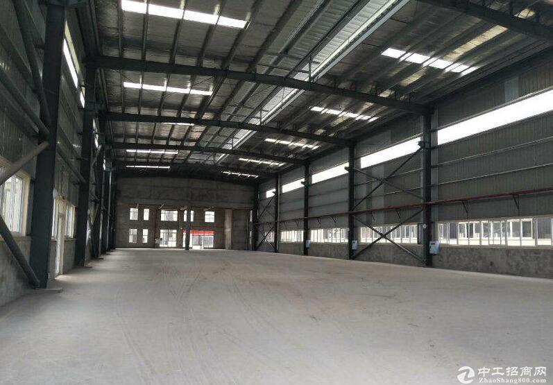 综保区外贸口岸单层12米独门独院厂房