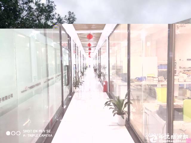 西丽茶光 业主直租700平米办公厂房出租(可分)