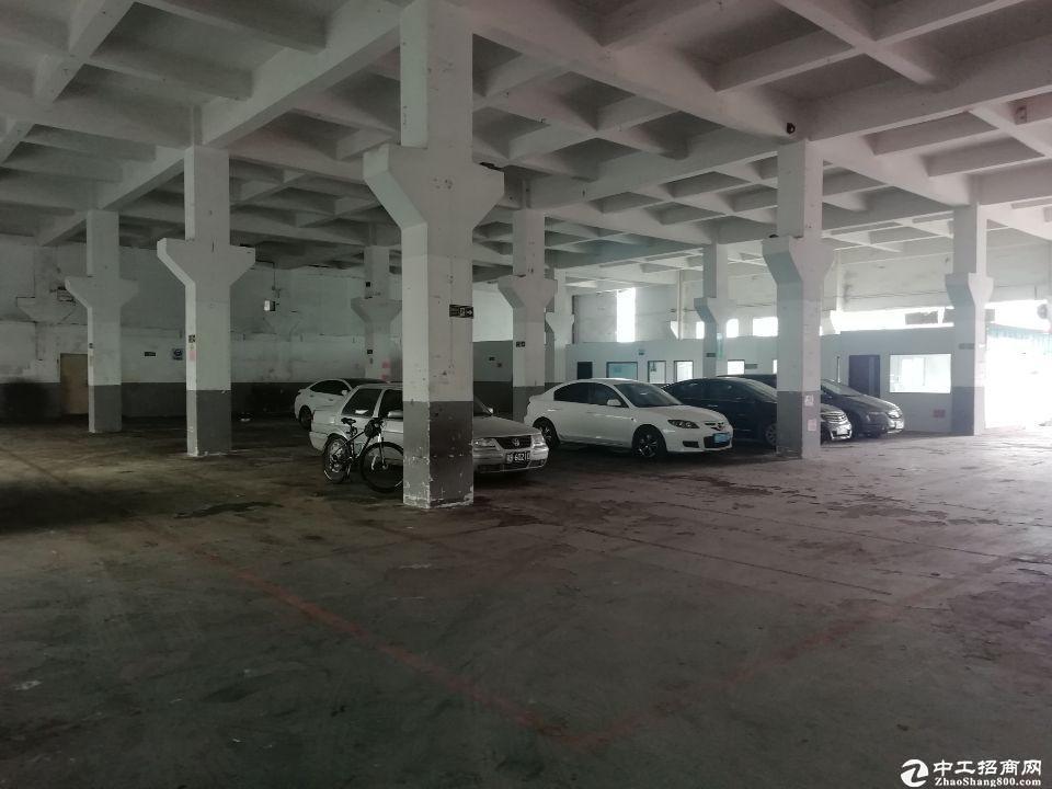 西丽科技园新出一楼物流仓库1600平空地超大