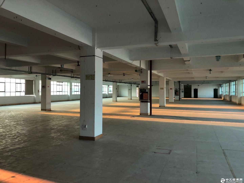 临深片区国有双证红本超大空地标准厂房出售,面积6000平