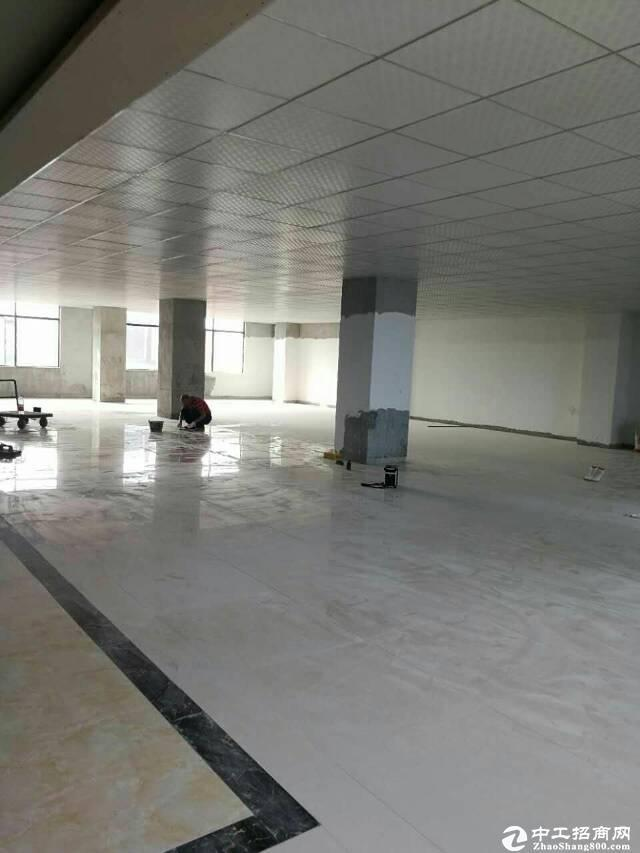 [特价]西丽茶光双地铁口100至1500平可做办公仓库出图片5