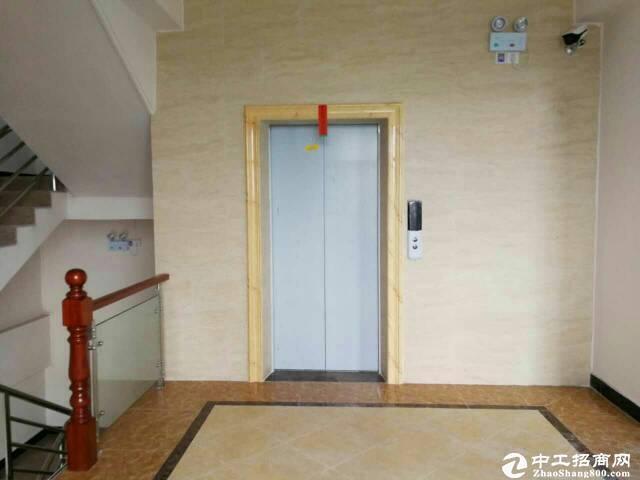 [特价]西丽茶光双地铁口100至1500平可做办公仓库出图片8