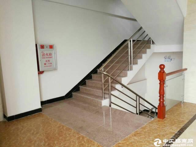 [特价]西丽茶光双地铁口100至1500平可做办公仓库出图片7