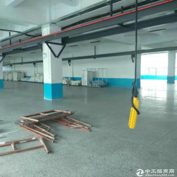 龙岗大运地铁站旁260平方红本厂房仓库出租,大小可分租