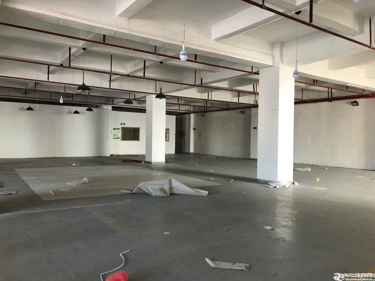 坪山独栋仓库厂房8000平米出租,13元,可分租