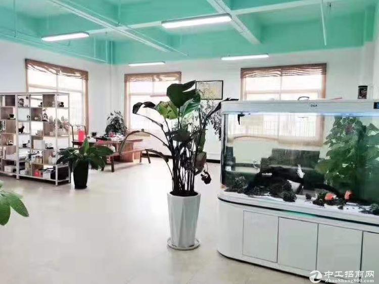 龙华大浪商业中心嘉安达新出810平办公仓库招租。