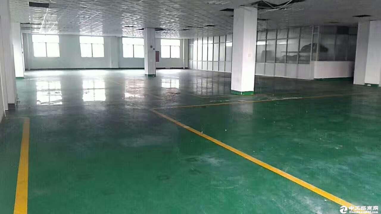 木棉湾地铁站旁工业园600平厂房仓库出租,大小可分租
