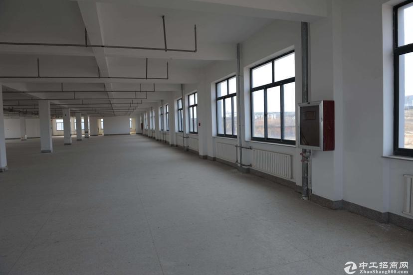 深圳沿江高速出口,大湾区域单一层占地12000平村委厂房出售