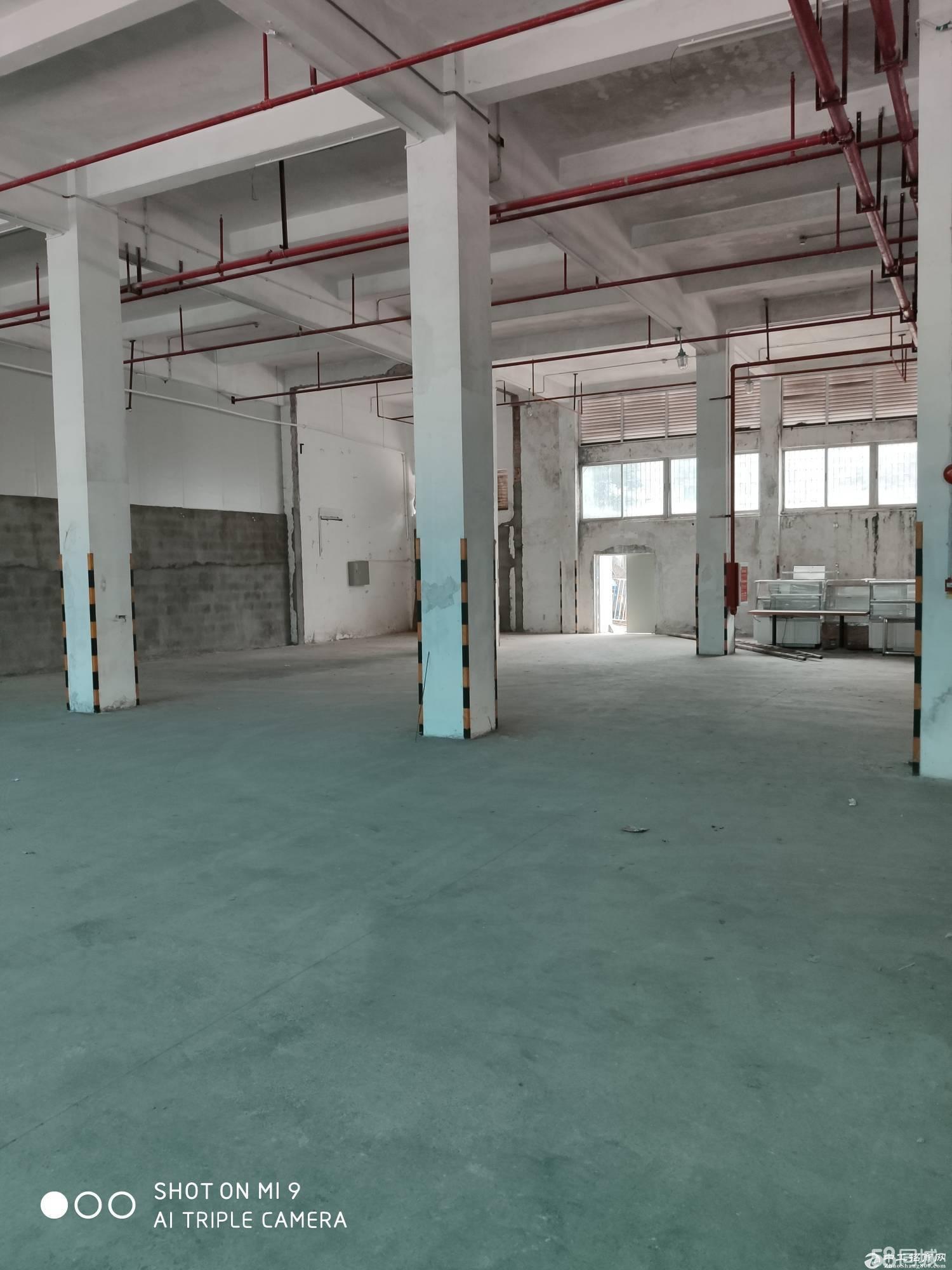 石岩石龙仔2000平米一楼钢构厂房出租合适加工仓库快递仓储