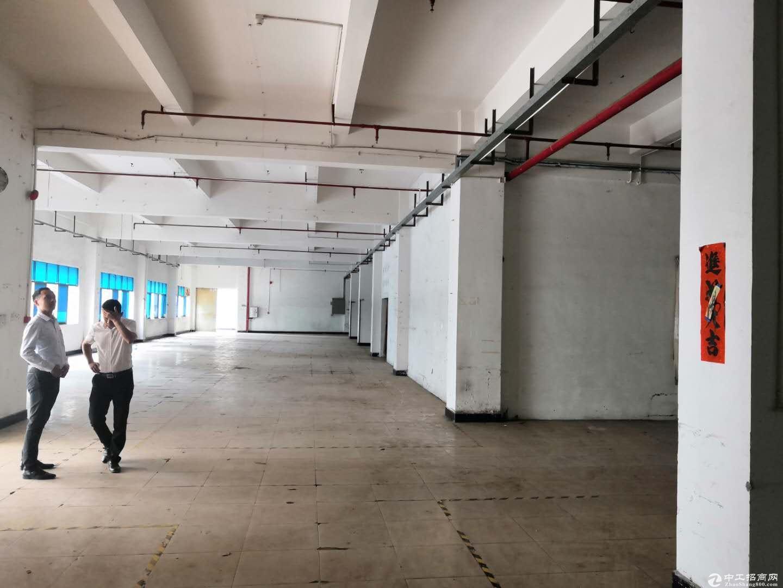 深圳有价值红本厂房独门独院8200平出售。。。