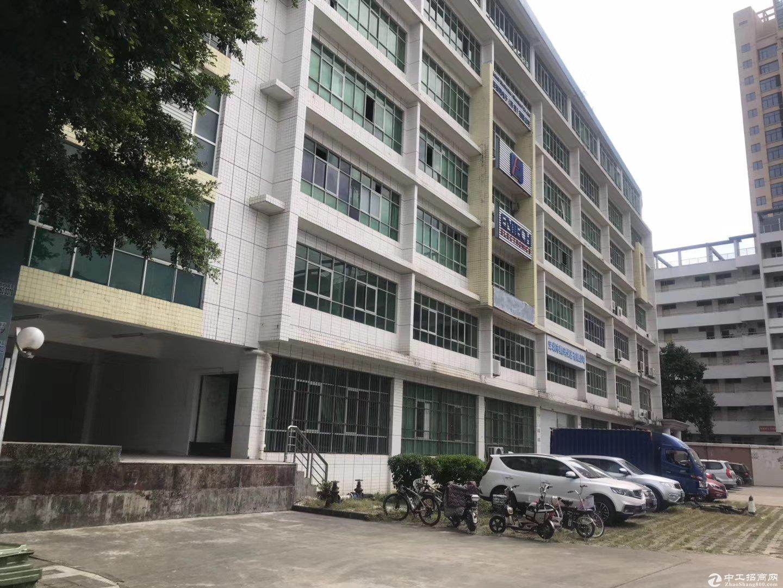 丹竹头_布澜路边_带卸货平台仓库2楼1500平方厂房出租