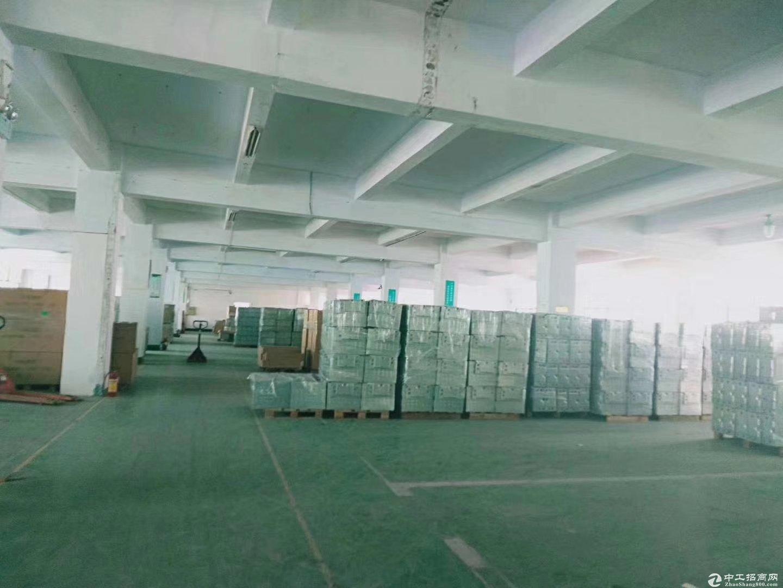 光明公明将石独栋厂房带前台精装修6600平低价出租/