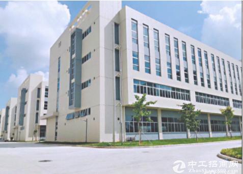 (出租) 坂田地铁站旁2000平红本厂房仓库 200平起租