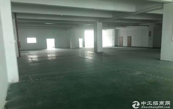 布吉丹竹头地铁站二楼厂房仓库370平出租